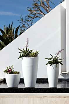 Our San Miren Planter's subtle rings swirl upward, giving a sense of organic texture. Tall Planters, Planter Pots, Modern Outdoor Living, Potted Plants, House Ideas, Gardens, Yard, Indoor, Organic