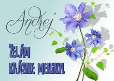 Andrej Želám krásne meniny!