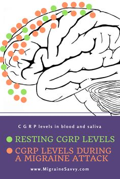 Calcitonin gene-related peptide (CGRP) levels increase in our blood and saliva when we have a migraine attack. These drugs could be new way forward to treat and prevent primary headache disorders like migraine. YAY! www.MigraineSavvy.com