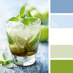 Lime and denim color palette s