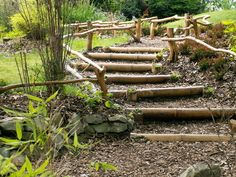 this is exactly how I want to do the slope going up to the front door. Wooden Outdoor Stairs and Landscaping Steps on Slope, Natural Landscaping Ideas Natural Landscaping, Hillside Landscaping, Outdoor Landscaping, Outdoor Gardens, Landscaping Ideas, Landscaping Software, Path Design, Garden Design, Design Ideas