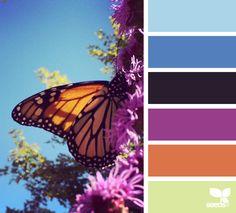 {winged hues} image via: @designseeds