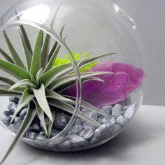 Pink Agate Mineral Slice Air Plant Terrarium // by seaandasters, $30.00