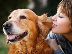 Жените предпочитат да говорят с кучето
