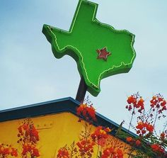 Austin is such a fun place to show off to out-of-town guests.There's plenty to appeal to anyone who's here for a visit — grandparents, hip young cousins, friends with new babies …