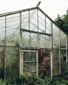 greenhouse inspiration via @haarkon_ via instagram. / sfgirlbybay
