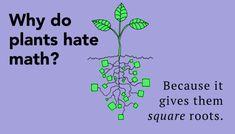 Funny Science Jokes: Laughs for Scientists jokes Funny Science Jokes: L.You can find Science jokes and more on our website.Funny Science Jokes: Laughs for Scientists jokes Funny Science Joke. Math Puns, Math Humor, Math Memes, Math Math, Teacher Humor, Teaching Math, Biology Humor, Grammar Humor, Math Teacher