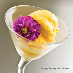 Mango Pineapple Yonanas Sorbet Recipe #ColorMyYonanas #ColorMyYonanas