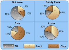 A-level Geography Soils Revision - Soil structure, formation and ...