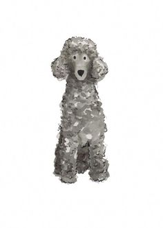 Poodles are usually seen in movies, as the family pet of choice of an elegant character, or in pet reveals showcasing their completely groomed hair. Red Poodles, French Poodles, Black Standard Poodle, Standard Poodles, Toy Puppies, Poodle Puppies, Pet Dogs, Pets, Doggies