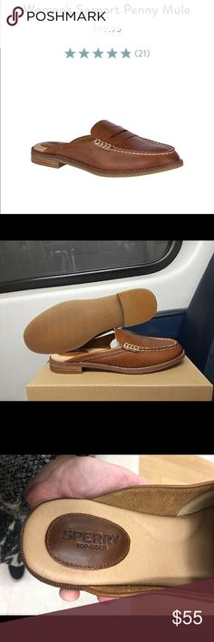 43314fa9fc4b NWOB Sperry Woman s Seaport Penny Mule Size 9.5. Beautiful brown backless  loafers. Sperry Shoes