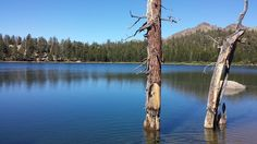 Upper Kinney Lake, Alpine County, California — by Charlie Pankey. Upper Kinney Lake is just off the PCT off HWY 4, between Markleville Ca, and Bear Valley. Fantastic short backpacking...