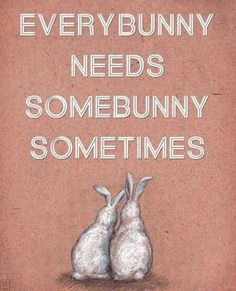 Every one need a bunny ❤️