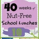 Week 10: 40 Weeks Nut-Free Kids School Lunches