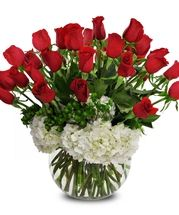 Send anniversary flowers from a real Roanoke, VA local florist. George's Flowers has a large selection of gorgeous floral arrangements and bouquets. We offer same-day flower deliveries for anniversary flowers. Rosen Arrangements, Red Rose Arrangements, Flower Arrangement, In Bloom Florist, Ecuadorian Roses, Bouquet Delivery, Anniversary Flowers, Hydrangea Not Blooming, Valentines Flowers