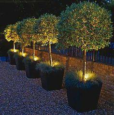 Iluminação de Jardim: Led, Residencial, Externo, Modelos Mais