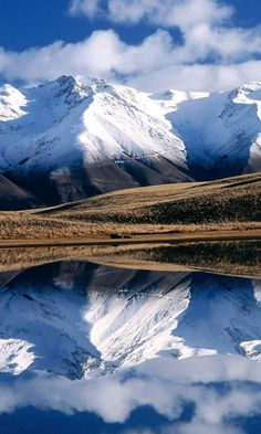 McKenzie Basin, South Island, New Zealand