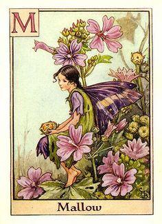 Mallow flower fairy | by ayacata7