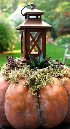 pumpkin planter....