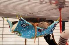 Image result for diy hamster toys More