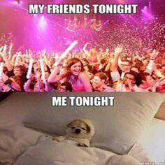 If you're a professional homebody, you'll definitely relate to these hilarious introvert memes about not being a people person. From not going out to avoiding conversation, these memes hit too close to home. New Year's Eve Jokes, New Years Eve Meme, Funny New Years Memes, New Years Eve Quotes, Quotes About New Year, New Year Quotes Funny Hilarious, Funny Laugh, Fun Funny, Funny Quotes