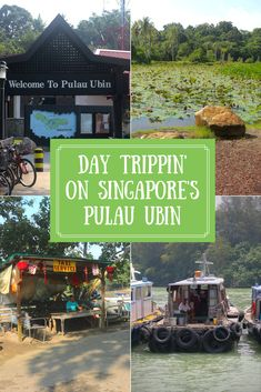 A visit to Singapore's Pulau Ubin is not to be missed. The island is an impressive example of preservation of both Singapore's heritage & environment. https://www.theislanddrum.com/day-trip-pulau-ubin-singapore/