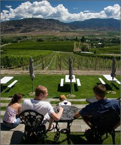 Road 13 Winery′s wine shop is located in a building shaped like a castle. didnt make it here Chenin Blanc, Wine Festival, Have You Tried, Corks, Wineries, Vines, Centre, Vineyard, Awards