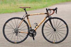 ZAMBIKES BAMBOO BIKE - cyclist