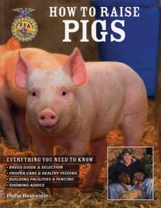 12 Tips on How to Raise Pigs for Meat | Melissa K. Norris