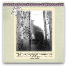 Use pet sympathy poems for a pet memorial service or to place inside of a pet sympathy card. Tribute To A Best Friend Sunlight streams through window pane unto a spot on the floor…. then I remember, it's where you … Sympathy Card Messages, Sympathy Poems, Cat Quotes, Animal Quotes, Vet Med, Pet Loss, Condolences, Pet Memorials, Your Dog