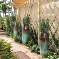 Boca Raton landscape designer Pamela Crawford offers top level landscape designs including renovations, garden planning, container gardening & more. Backyard Pool Landscaping, Tropical Landscaping, Landscaping With Rocks, Modern Landscaping, Tropical Garden, Front Yard Landscaping, Florida Landscaping, Landscaping Design, Plan Image