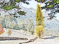 Foto composición de circuito Corto Bariloche