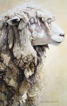 MONTHLY INSPIRATION >> YEAR OF THE SHEEP — LUX / EROS