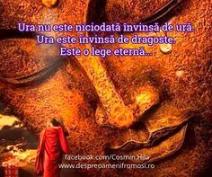 Good Night, Alba, Movies, Movie Posters, Facebook, Quotes, Characters, Biblia, Nighty Night