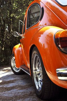 my orange beetle
