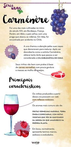 Wine Preserver Glass Wine Preserver And Opener Red Sangria Recipes, Wine Searcher, Wine Down, Wine Guide, Wine Subscription, Wine Refrigerator, Expensive Wine, Wine Case, Cheap Wine