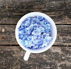 aesthetic, alternative, boho, grunge, hipster Pinned by ZenSocialKarma Flower Yellow, My Favorite Color, My Favorite Things, All The Bright Places, Everything Is Blue, Flower Aesthetic, Boho Aesthetic, Favim, Pastel Blue