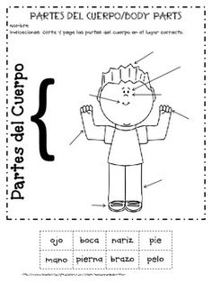 This freebie contains one boy, one girl, cut and paste worksheet on Parts of the Body in Spanish. I hope your students enjoy it!.   The answer key is included.   Please, I will love your comment... Muchas Gracias!