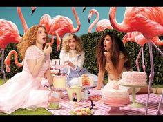 Julia Petit Passo a passo M.A.C Flamingo Park - YouTube