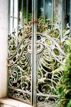 Jazz Age, Conservatory, Abandoned, Garden, Plants, Buildings, Left Out, Garten, Winter Garden
