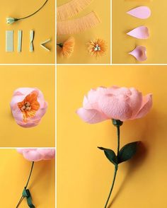 """Hi there, I have an amazing post for you today! I collaborated with """"THE BEST"""" paper flower smiths to bring you a series of blog posts, called: 101 Paper Flowers & Where to Start - Part I. This series will introduce you to some of the most incredible and talented paper flower pro's out there."""