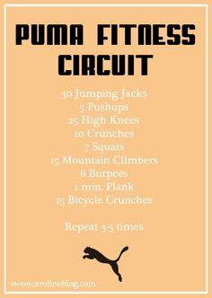 Circuit Training with Puma Fitness