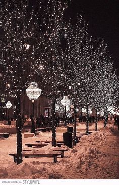 Love these beautiful light filled trees. Just the way Christmas should be.All… More