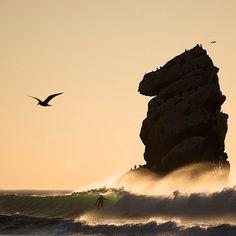 Barrels and birds in Morro Bay. Photo: #ChrisBurkard  #Surfer #SurferPhotos  @chrisburkard #Padgram