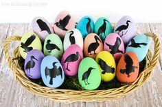 Bird Nerd Easter Eggs & FREE Silhouette Cut File via thinkingcloset.com