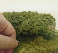 How to make forests on a budget for a model railway or diorama.