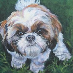 shih tzu art CANVAS print of LA Shepard painting by TheDogLover