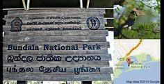 Risultati immagini per bundala national park