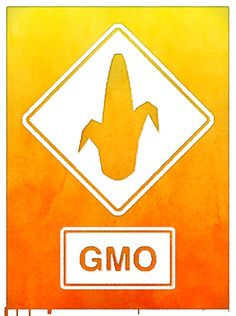 Monsanto's #GMO corn and soy crops don't appear to be holding up well to a warming climate: http://www.bloomberg.com/news/2013-08-26/soybeans-rally-to-highest-since-june-as-hot-weather-curbs-crops.html  Plus, Monsanto's government-promoted, patent-protected, genetic-pollution-causing GMO system is threatening agricultural biodiversity! Monsanto appears to be a threat to humanity's healthy and climate-change resilient food supply!