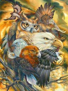 Bergsma Gallery Press :: Products :: Easel Back Tiles :: Birds :: Eagles :: Sky Kings - Easel Back Tile Native American Pictures, Native American Artwork, American Indian Art, Native American Indians, Cherokee Indian Art, Native Americans, Graffiti Kunst, Animal Spirit Guides, Tatoo Art